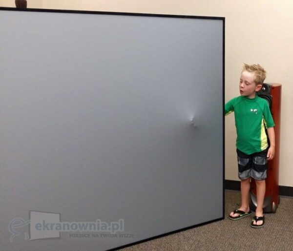 Screen Innovations 5 Series Zero Edge - ekran do kina domowego | sklep ekranownia.pl