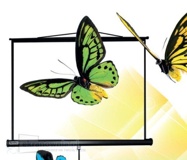 Projekcyjny ekran przenośny na statywie - optika | sklep ekranownia.pl