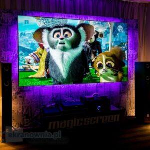 Ekran MagicScreen Future