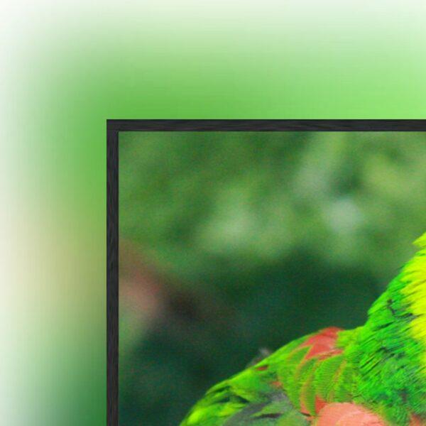 Kauber Frame Active LED - ramowy ekran projekcyjny